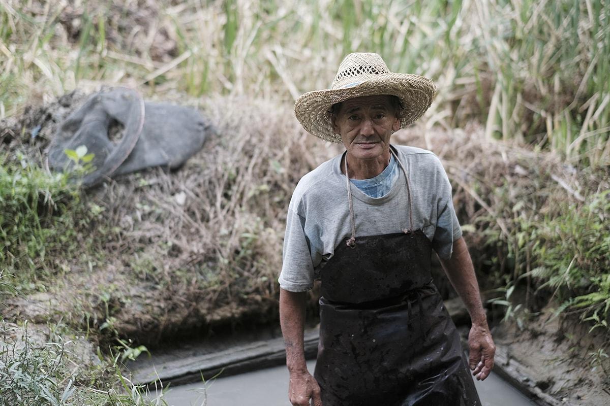 肥後染色の泥田に浸る職人