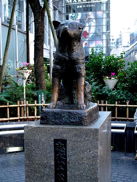 渋谷区役所提供
