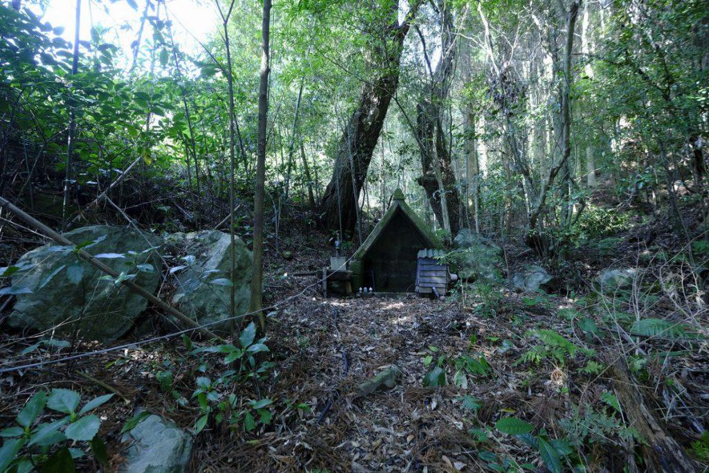 敷地内にある湧水場。祠が建ててある